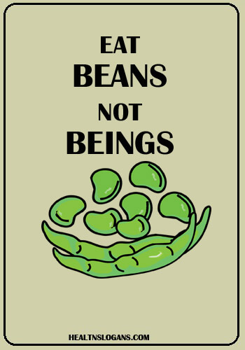Vegetarian Slogans - Eat Beans, Not Beings