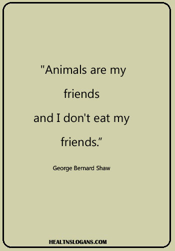 "vegan sayings funny - ""Animals are my friends...and I don't eat my friends."" -George Bernard Shaw"