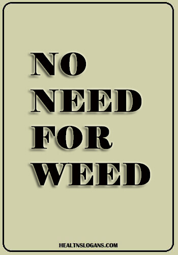 anti drug slogans - No Need for Weed