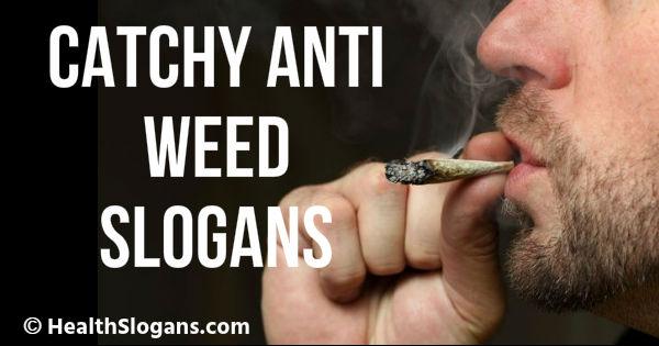 Anti Weed Slogans
