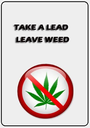 Anti Weed Slogans - Take a lead, leave weed