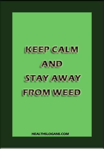 anti drug slogans - Keep calm and stay away from weed