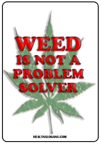 anti drug slogans - Weed is not a problem solver