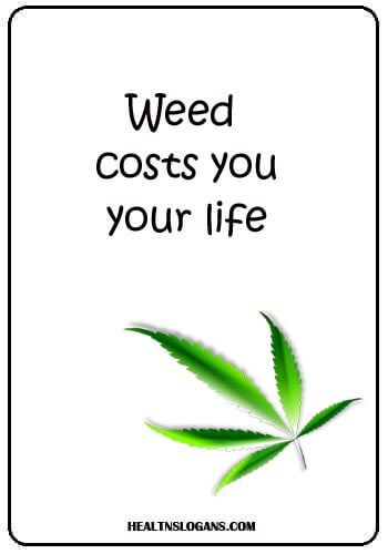 Anti Weed Slogans - Weed costs you your life