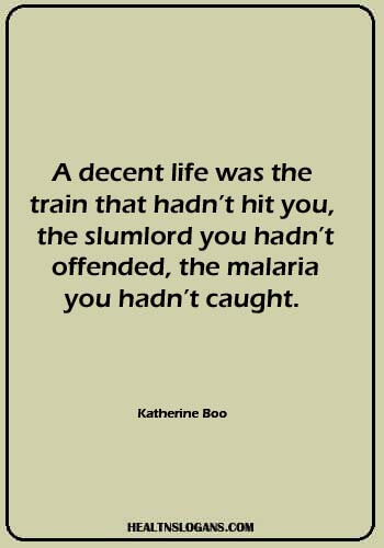 """slogans on mosquitoes - """"A decent life was the train that hadn't hit you, the slumlord you hadn't offended, the malaria you hadn't caught."""" — Katherine Boo"""