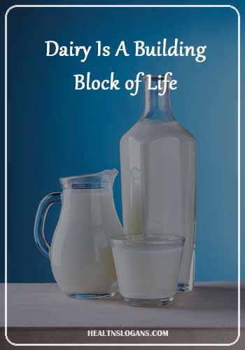 Milk Slogans  - Dairy Is A Building Block of Life