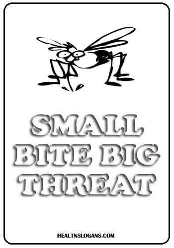 dengue slogans - Small bite big threat